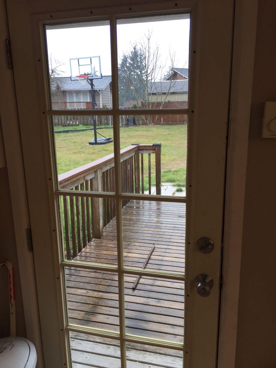 looking out door. \u201cLooking Out My Back Door\u201d Looking Door